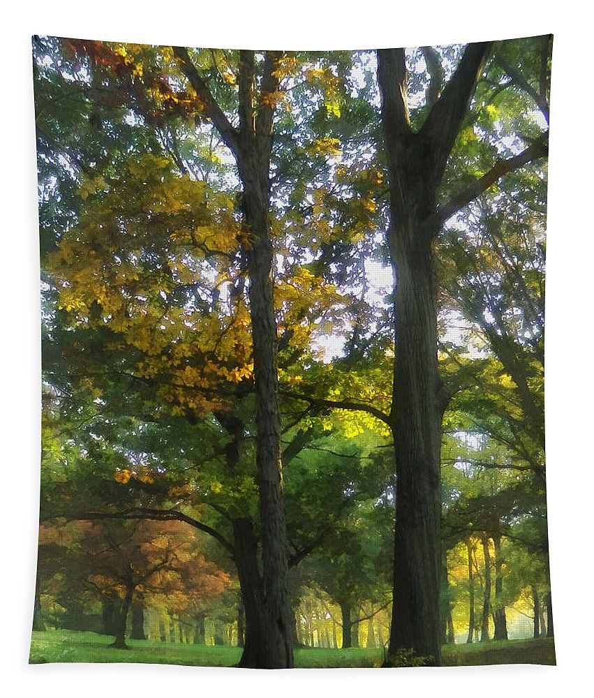 Autumn Tapestry featuring the photograph Hint Of Autumn by Susan Savad
