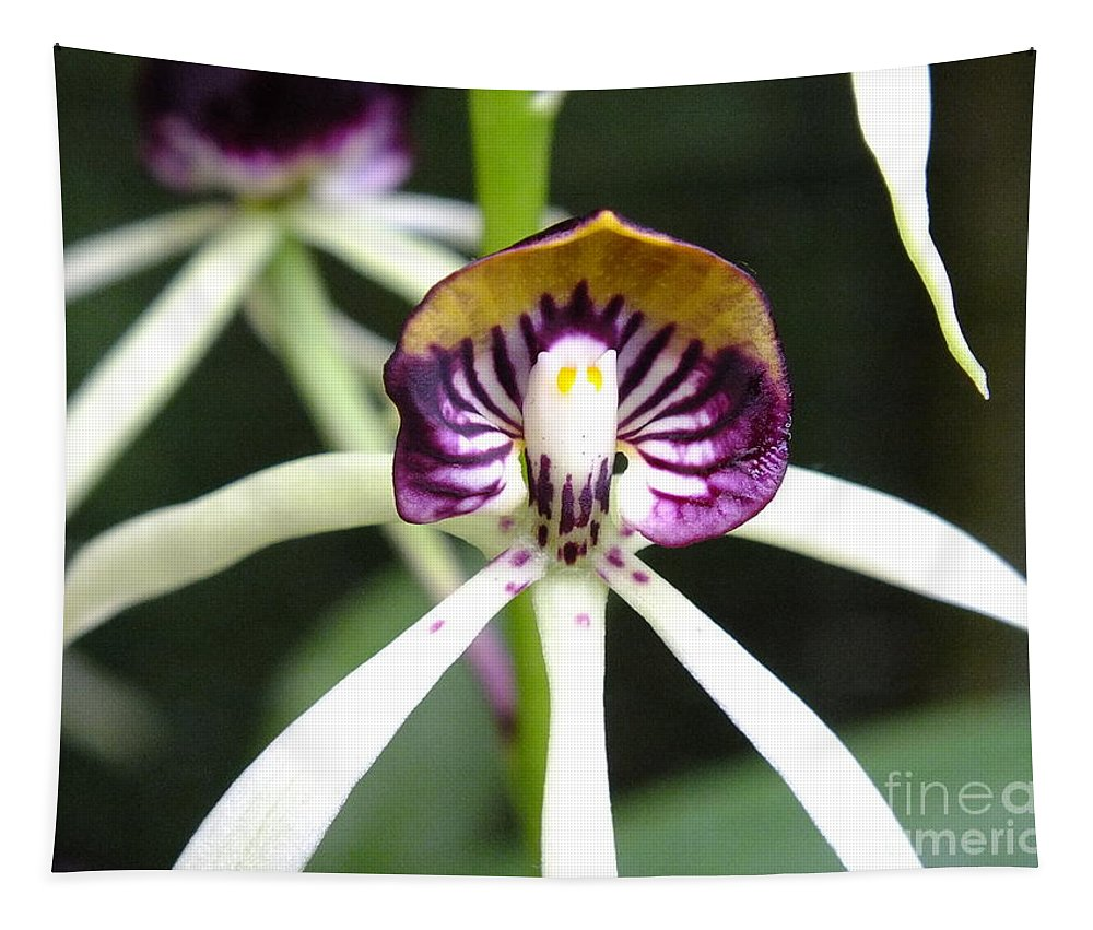 Orchid Tapestry featuring the photograph Holding Your Heart by Yenni Harrison