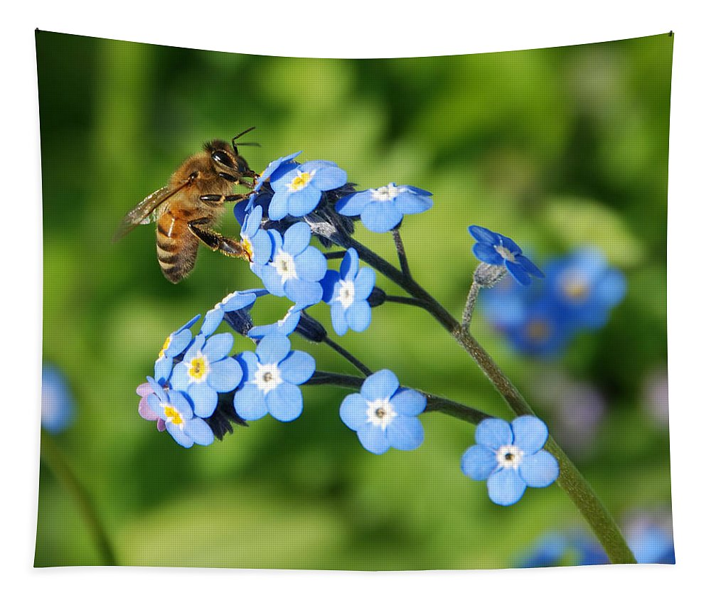 Animal Tapestry featuring the photograph Honey Bee On Forget-me-not Flowers by Marv Vandehey