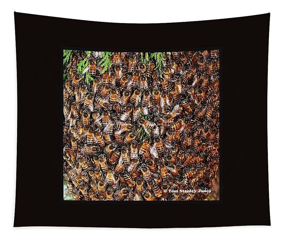 Honey Bee Swarm Tapestry featuring the photograph Honey Bee Swarm by Tom Janca