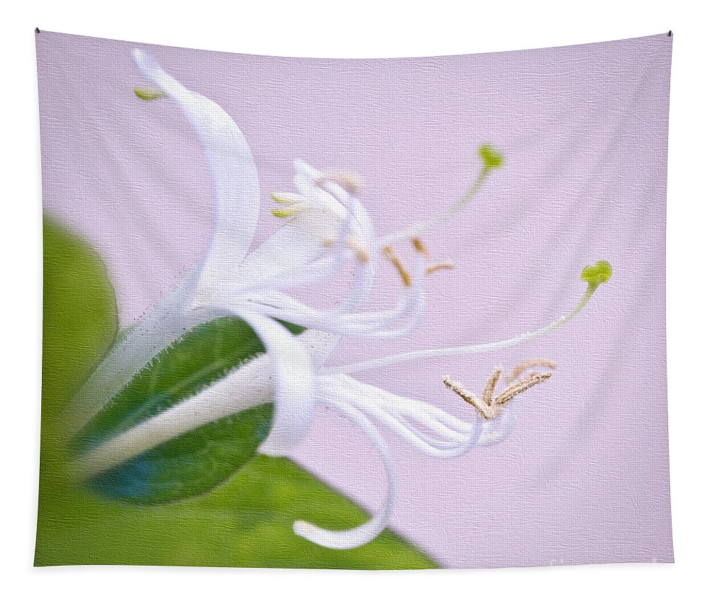 Honeysuckle Tapestry featuring the photograph Honeysuckle by Delphimages Photo Creations