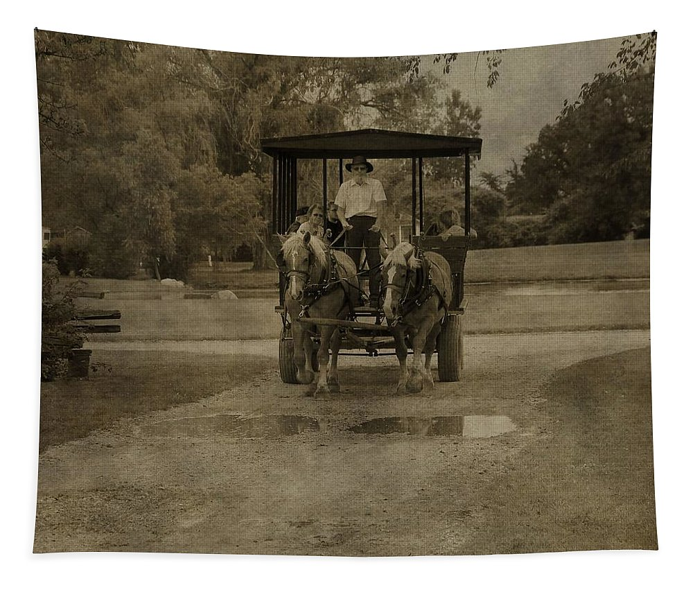 Horse Carriage Tour Tapestry featuring the photograph Horse Carriage Tour by Dan Sproul