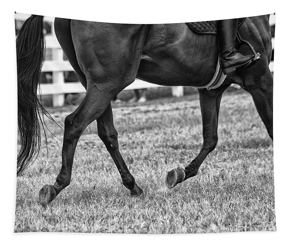 Horse Stepping Tapestry featuring the photograph Horse Stepping by Karol Livote