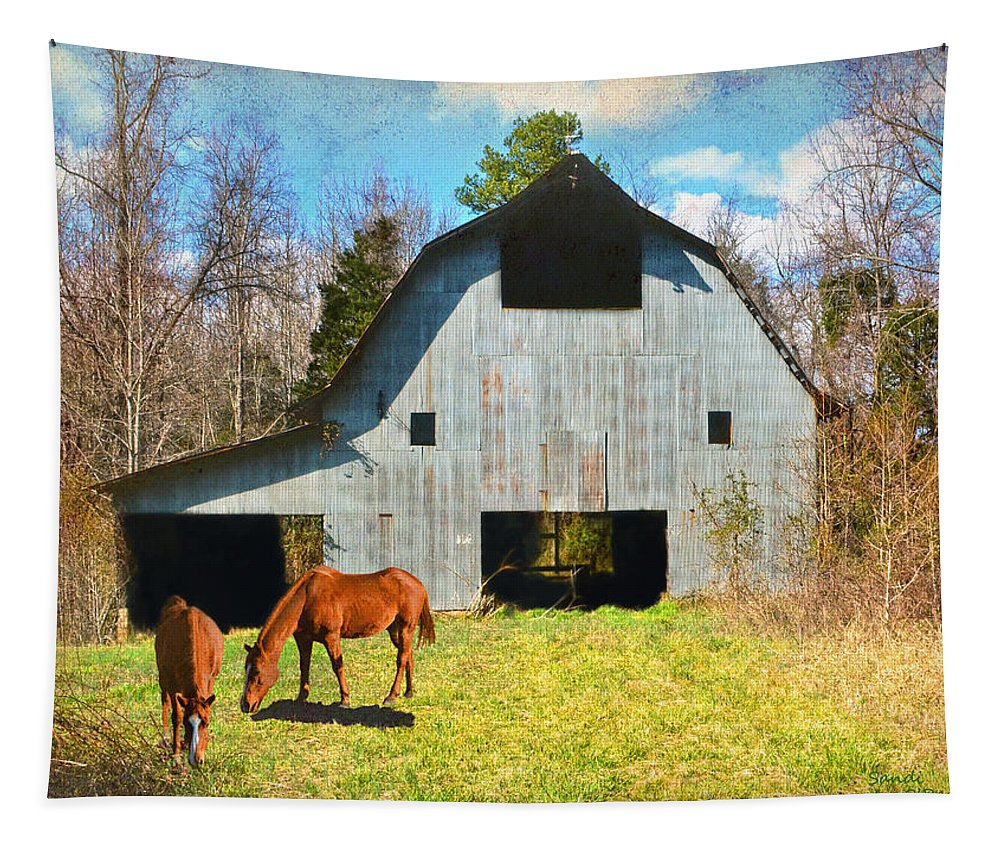 Barn Tapestry featuring the photograph Horses Call This Old Barn Home by Sandi OReilly