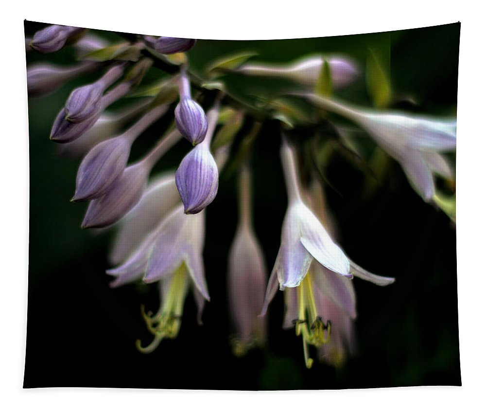 Flowers Tapestry featuring the photograph Hosta Petals by Jessica Jenney