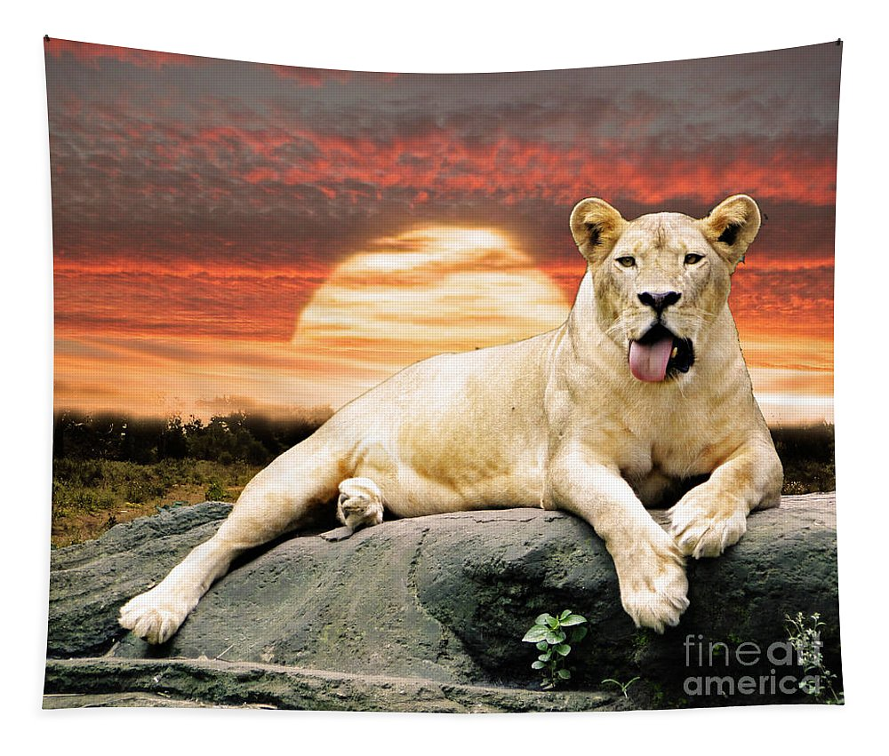 Lioness Tapestry featuring the photograph hot by Ben Yassa