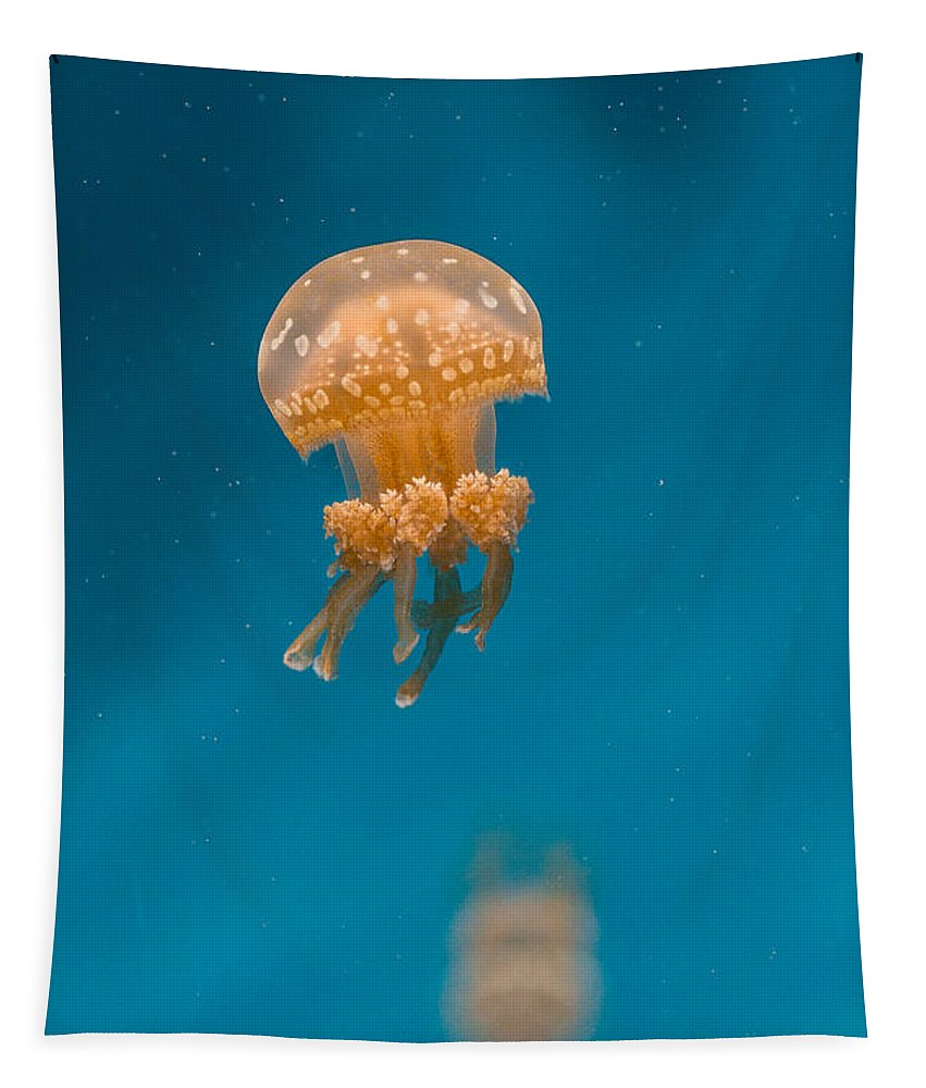 Jellyfish Tapestry featuring the photograph Hovering Spotted Jelly 1 by Scott Campbell