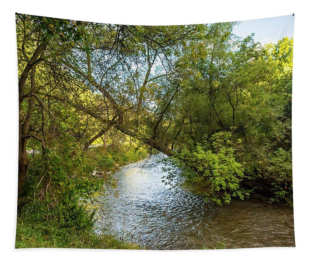 Steve Harrington Tapestry featuring the photograph Humber River 2 by Steve Harrington