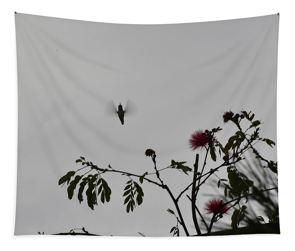Linda Brody Tapestry featuring the photograph Hummingbird Silhouette I by Linda Brody