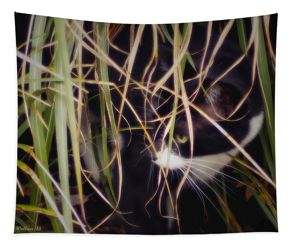 2d Tapestry featuring the photograph Hunter by Brian Wallace