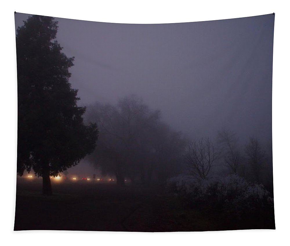 Night Tapestry featuring the photograph I-5 In A Frozen Fog by Mick Anderson