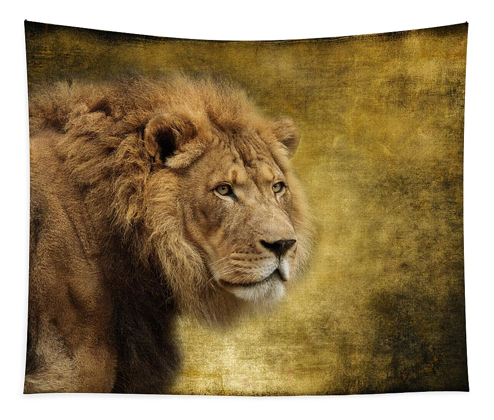 I Am The King Tapestry featuring the photograph I Am The King by Wes and Dotty Weber