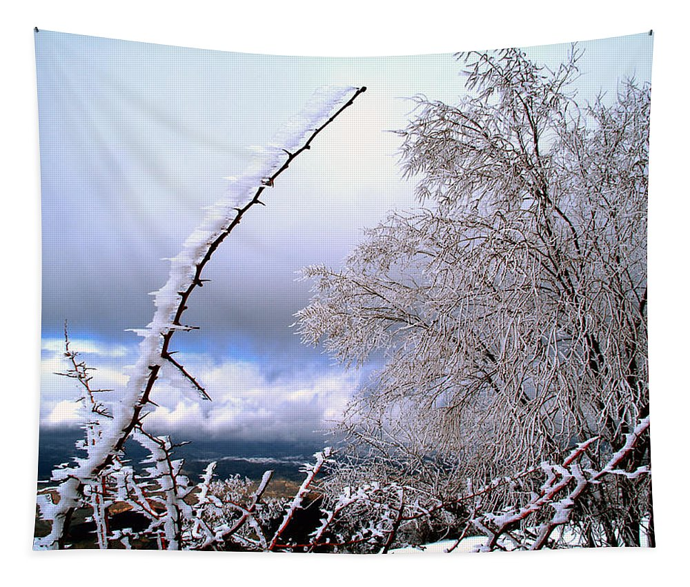 National Park Tapestry featuring the photograph Ice by Guido Montanes Castillo