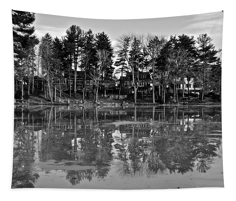 Icy Tapestry featuring the photograph Icy Pond Reflects by Frozen in Time Fine Art Photography