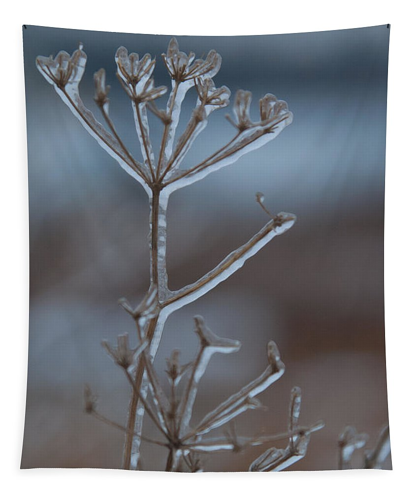 Ice Tapestry featuring the photograph Icy Shapes And Lines by Cascade Colors