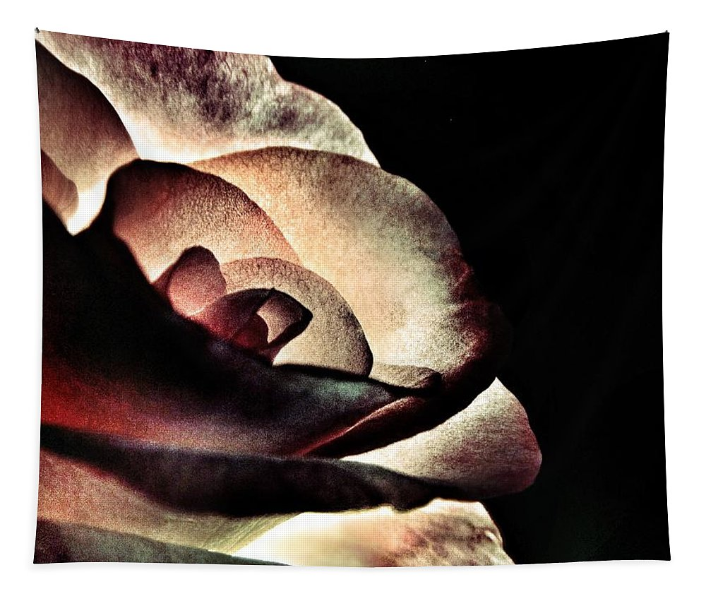 Illuminated Tapestry featuring the photograph Illuminated Rose by Marianna Mills