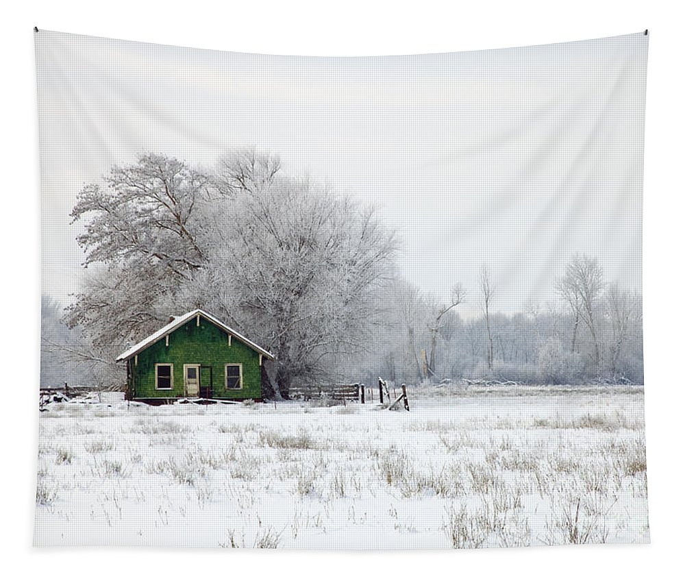 Shack Tapestry featuring the photograph In A Sea Of White by Mike Dawson