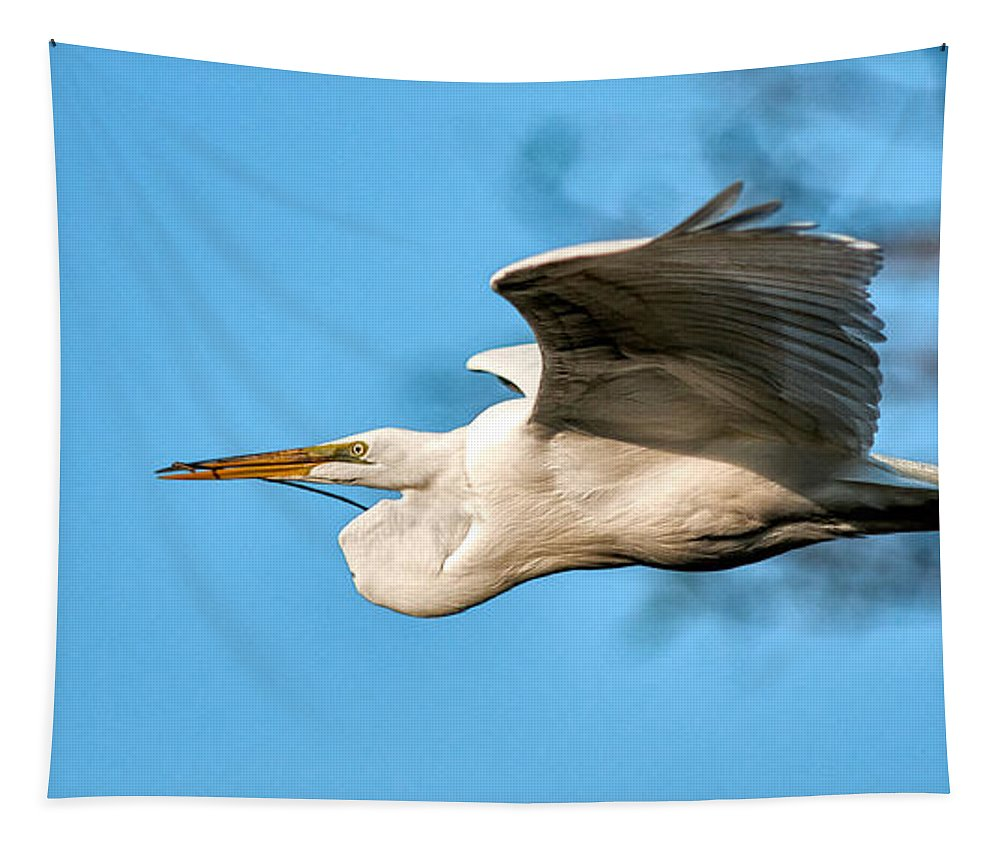 Bird Tapestry featuring the photograph In Flight With Stick by Christopher Holmes