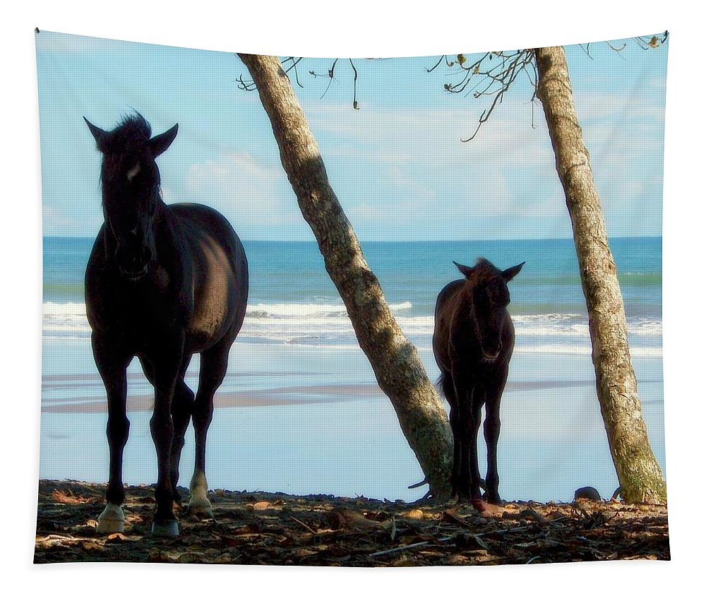 Horses Tapestry featuring the photograph In Her Image by Karen Wiles