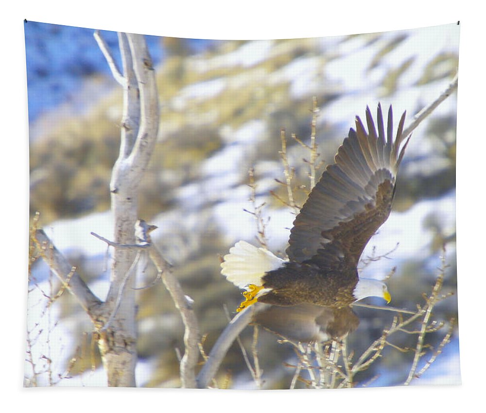 Eagles Tapestry featuring the photograph In Take Off by Jeff Swan