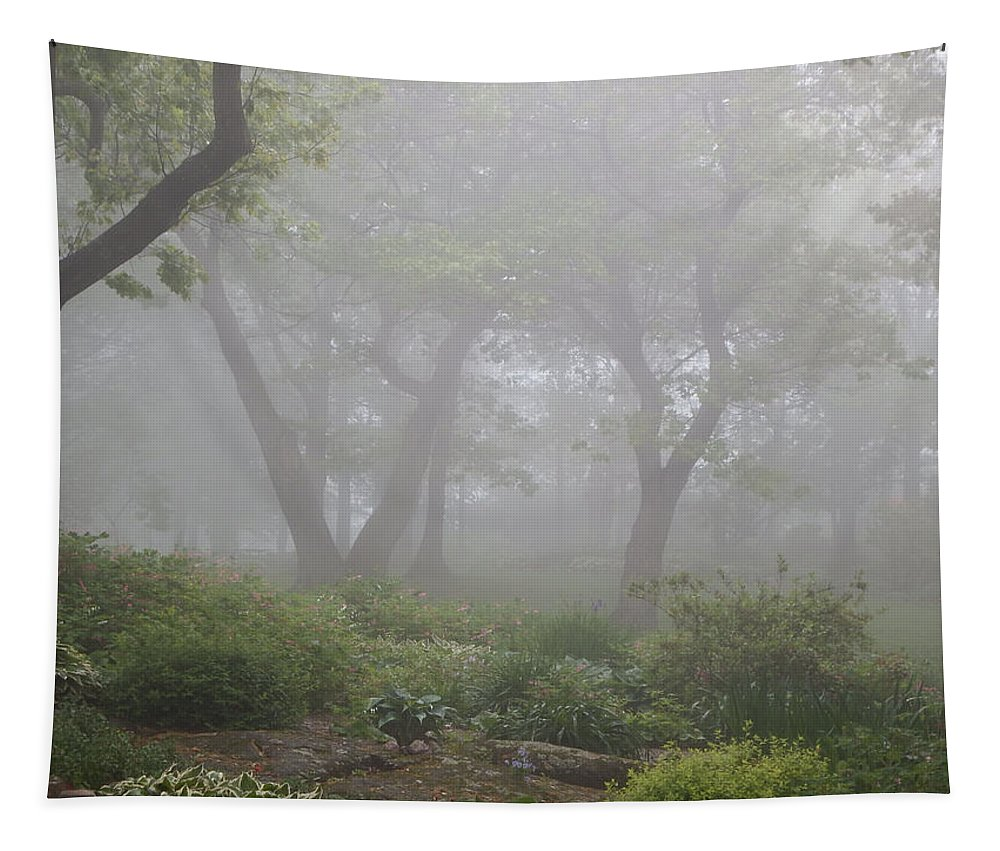 Fog Tapestry featuring the photograph In The Garden by Alison Gimpel