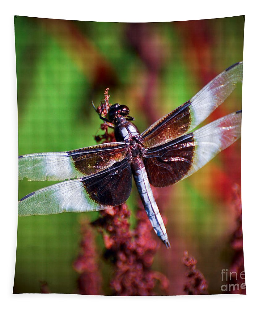 Dragonfly Tapestry featuring the photograph In The Red by Kerri Farley