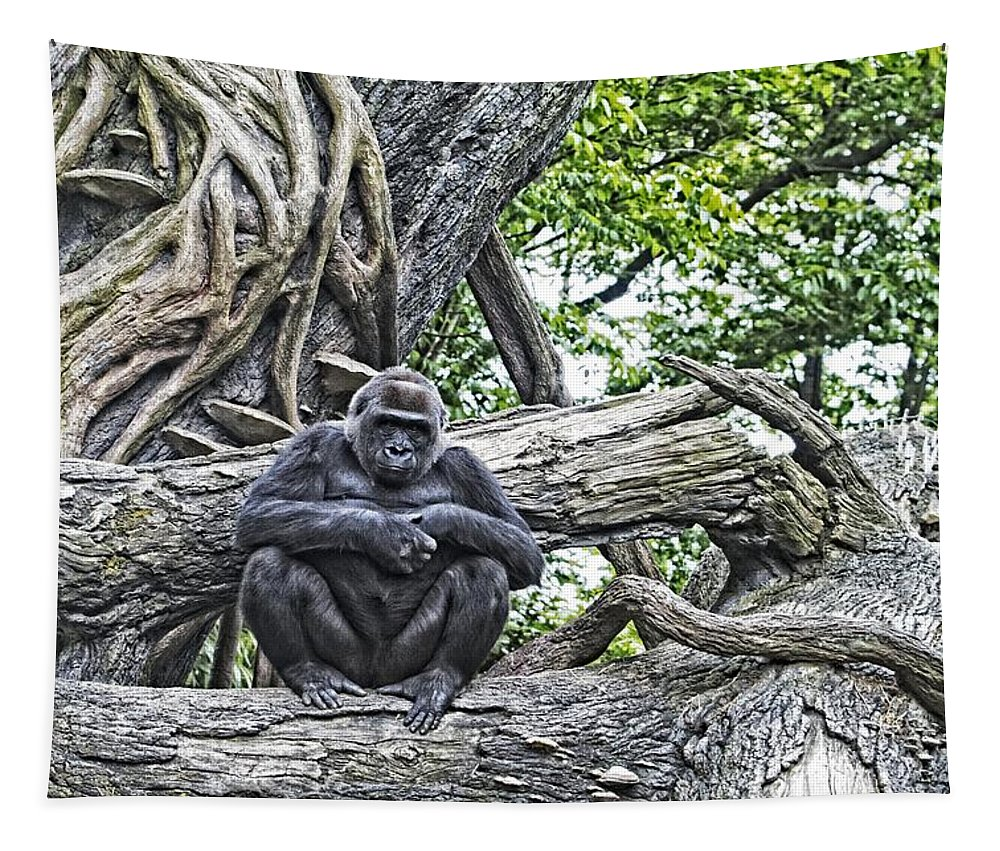 Gorilla Tapestry featuring the photograph In The Treetop by Alice Gipson