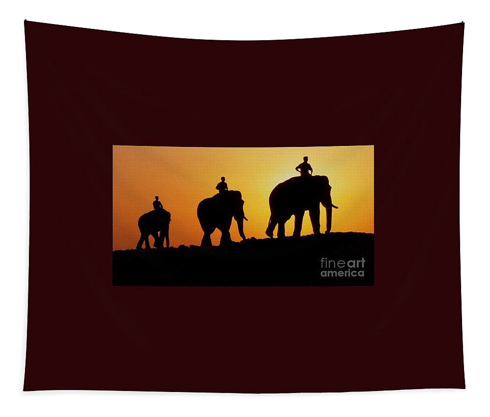 Animals Tapestry featuring the photograph India 3 by Ben Yassa