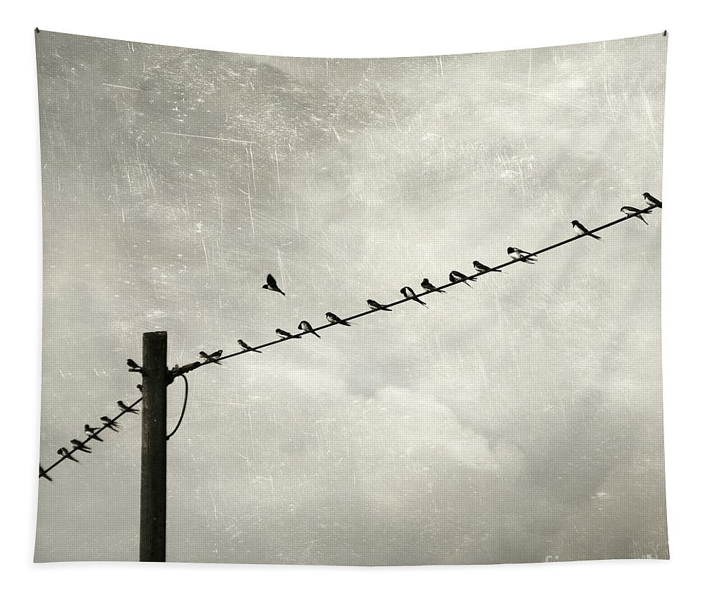 Atmosphere Tapestry featuring the photograph Individualist by Dirk Wuestenhagen