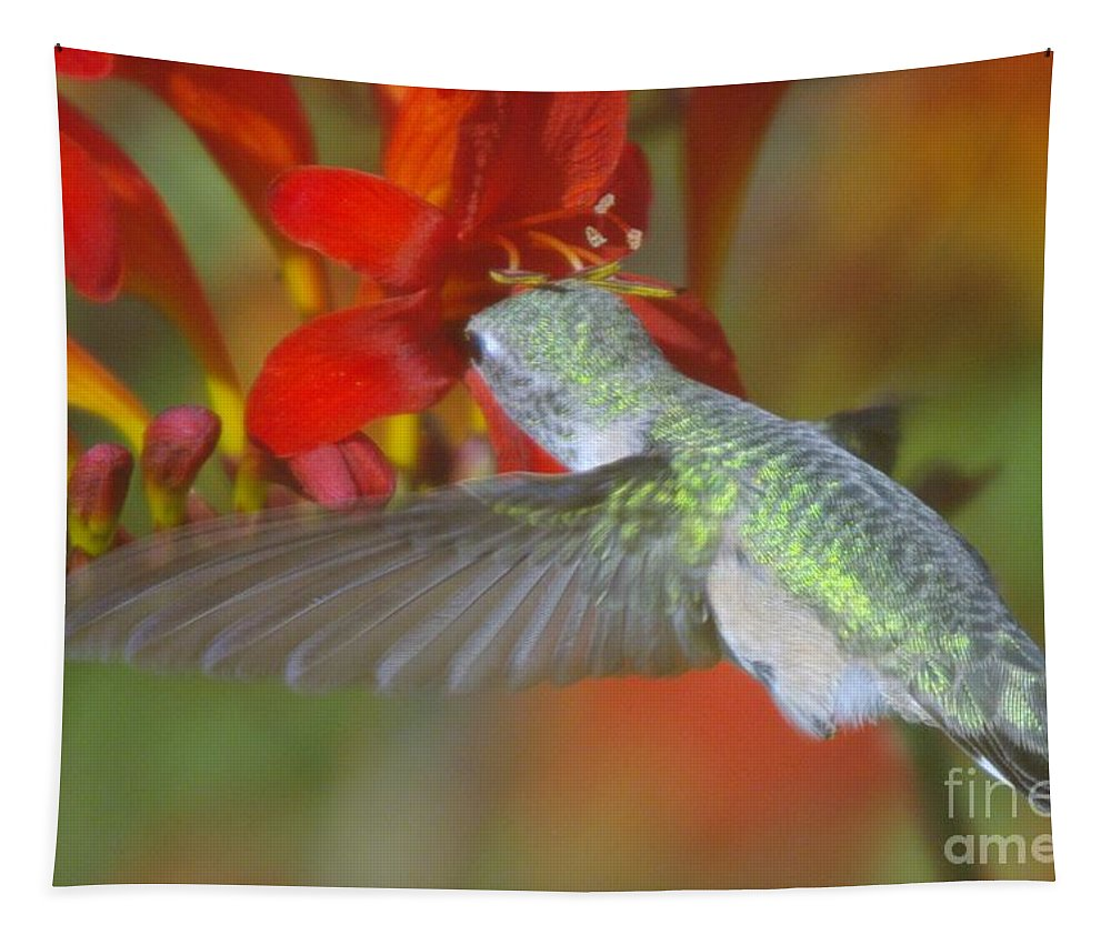 Wings Tapestry featuring the photograph Indulgence by Jeff Swan