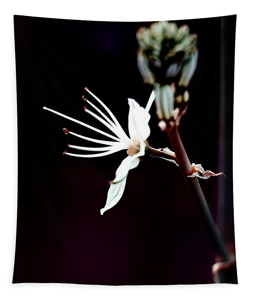Beautiful Tapestry featuring the photograph infrared Asphodel by Stelios Kleanthous