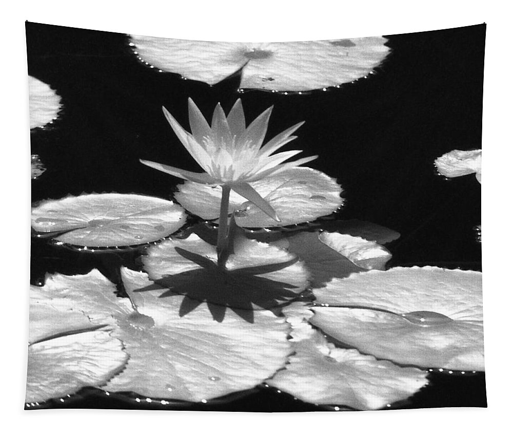 Water Lily Tapestry featuring the photograph Infrared - Water Lily 02 by Pamela Critchlow