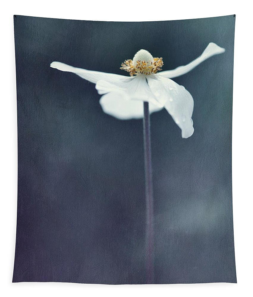 Alone Tapestry featuring the photograph Innocence by Priska Wettstein