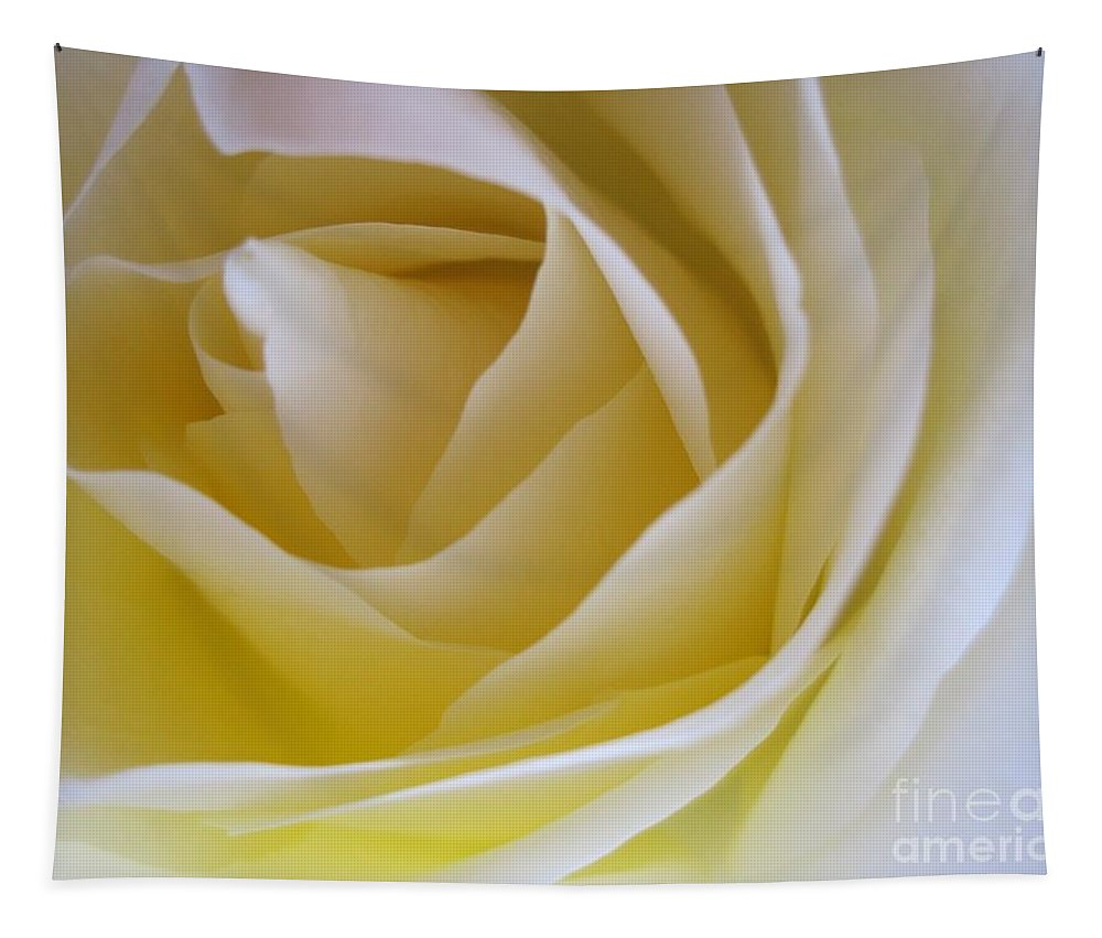 Floral Tapestry featuring the photograph Innocence White Rose 4 by Tara Shalton