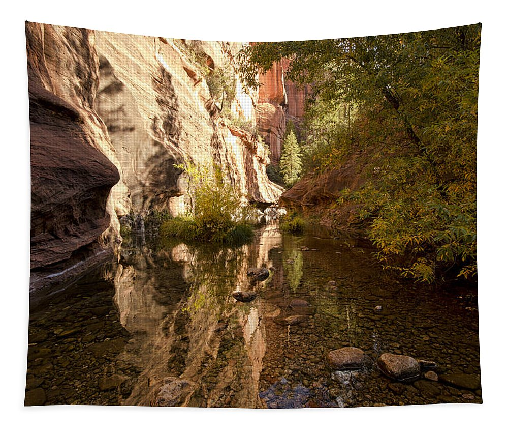 Fall Tapestry featuring the photograph Into The Canyon by Saija Lehtonen