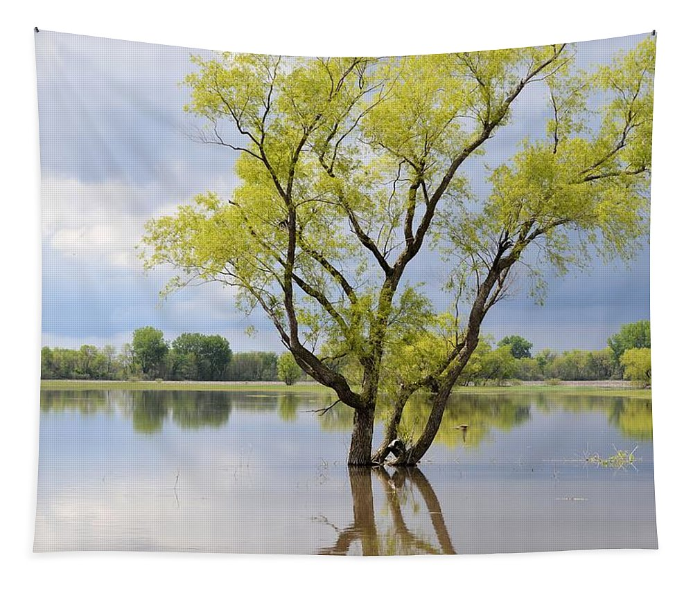 Flood Tapestry featuring the photograph Iowa Flood Plains by Bonfire Photography