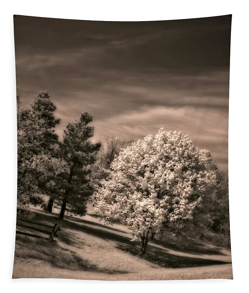 Landscape Tapestry featuring the photograph ...is But A Dream by Steve Harrington