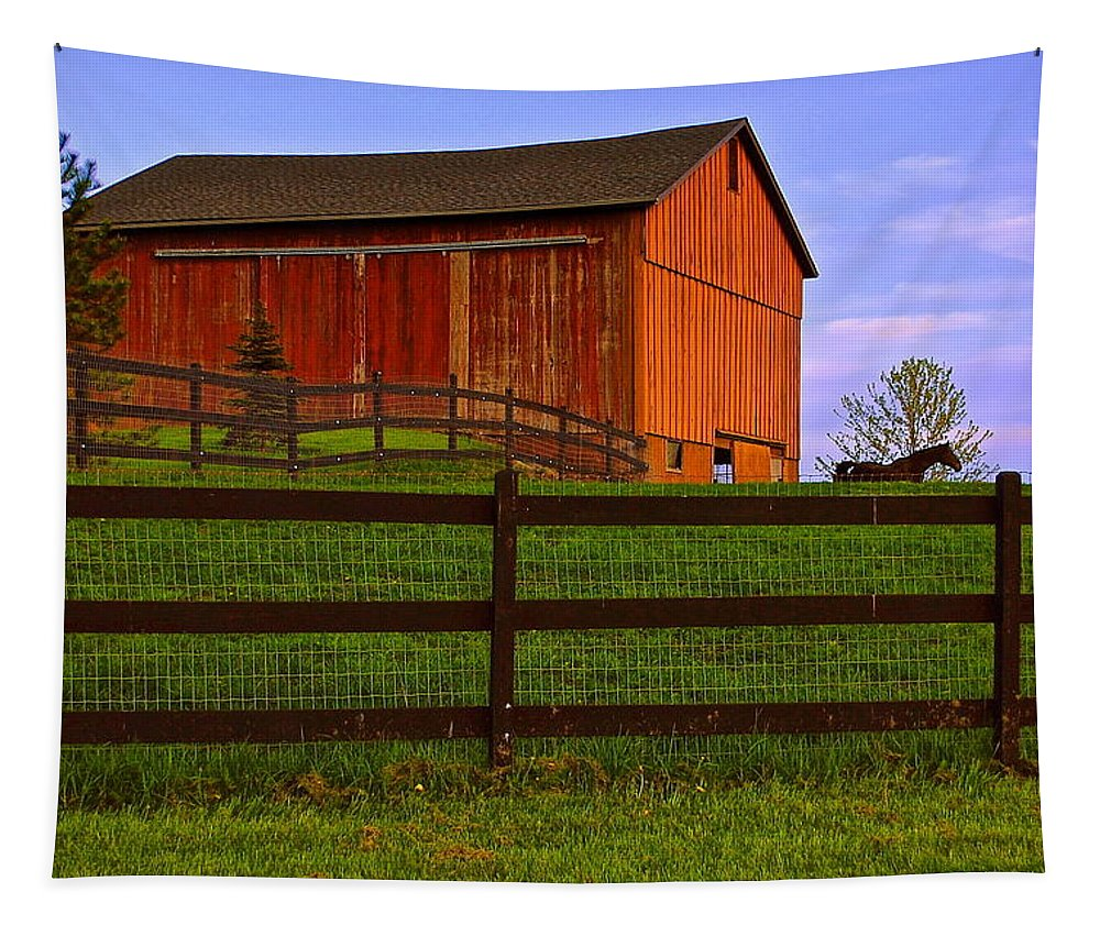 Red Tapestry featuring the photograph Is Every Barn Red by Frozen in Time Fine Art Photography
