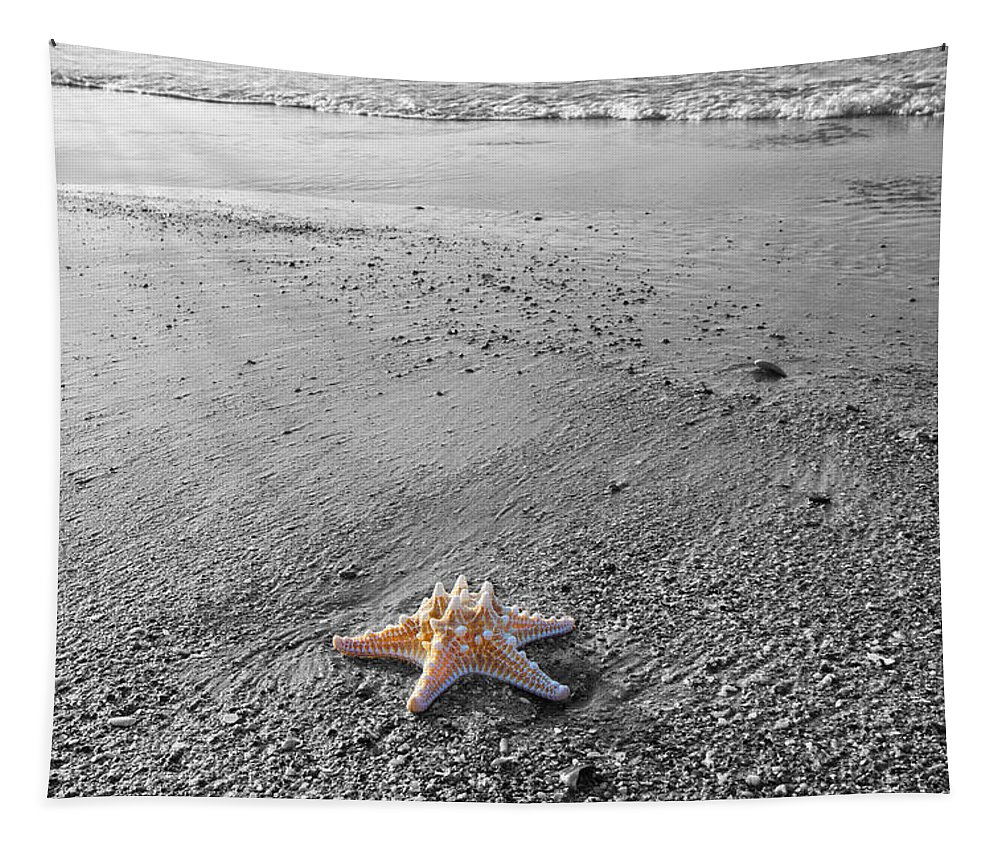 Starfish Tapestry featuring the photograph Island Star by Betsy Knapp