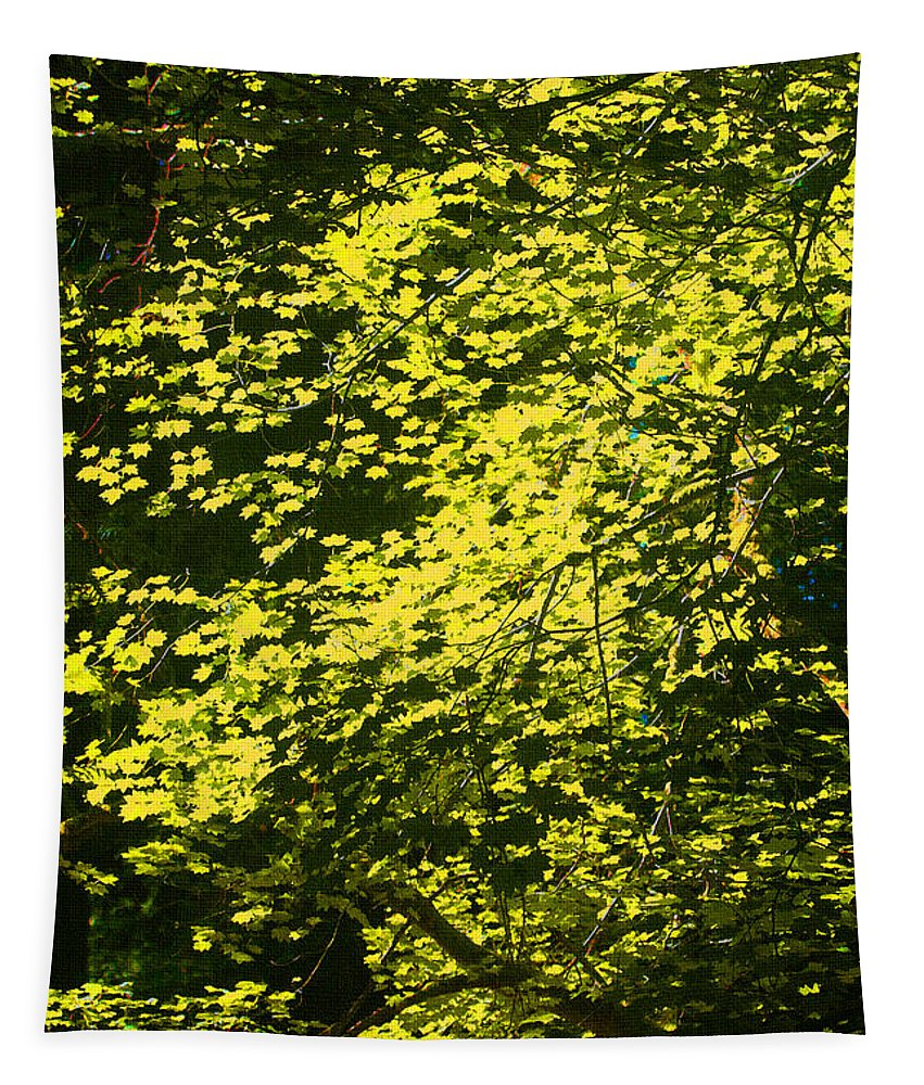 It's Autumn Time Tapestry featuring the photograph It's Autumn Time by Tom Janca