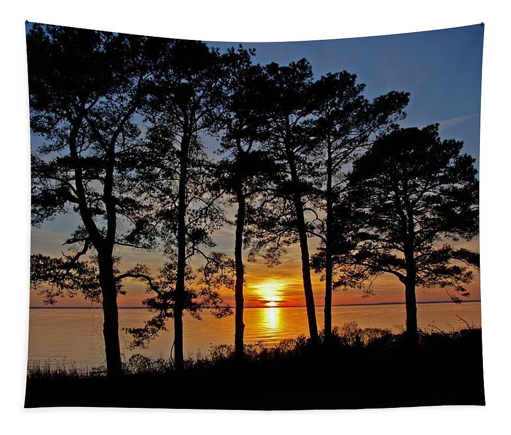 Newport News Tapestry featuring the photograph James River Sunset by Suzanne Stout