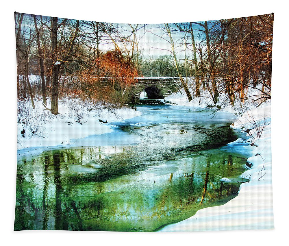 Winter Tapestry featuring the photograph January Thaw by Jessica Jenney