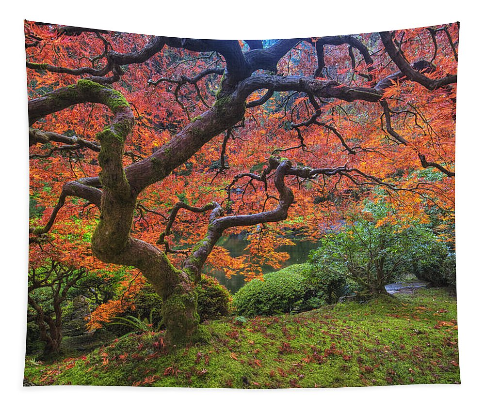 Oregon Tapestry featuring the photograph Japanese Maple Tree by Mark Kiver