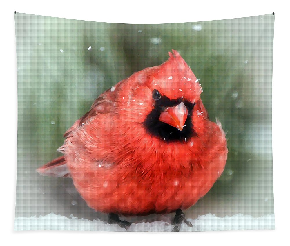 Cardinal Tapestry featuring the photograph Jolly Old ....... Cardinal by Kerri Farley