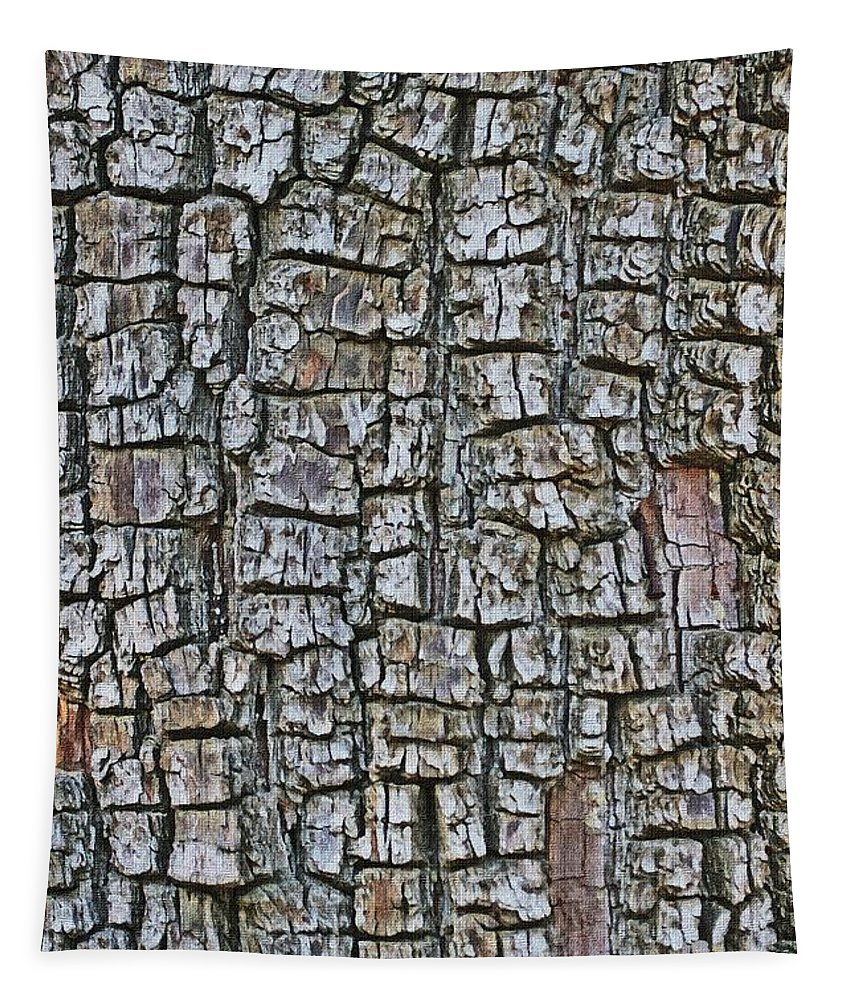 Juniiper Bark Tapestry featuring the photograph Juniper Bark- Texture Collection by Tom Janca