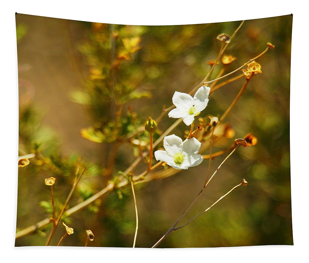 Tapestry featuring the photograph Just Two Little White Flowers by Jeff Swan