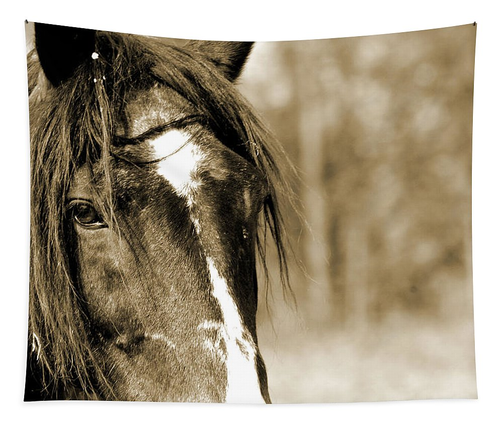 Horse Tapestry featuring the photograph Kindness by Annette Persinger