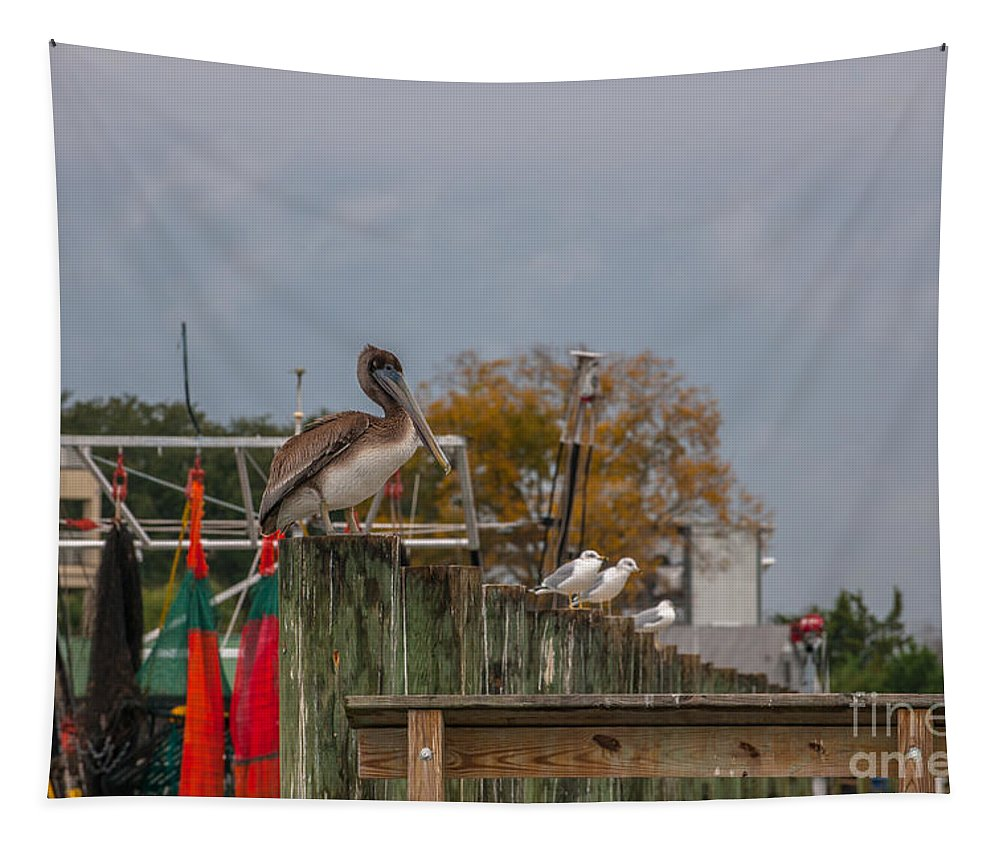 Pelican Tapestry featuring the photograph King Pelican by Dale Powell