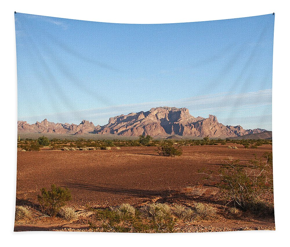 Kofa Mountains With Wild Palm Tree Tapestry featuring the photograph Kofa Mountains With Wild Palm Trees by Tom Janca