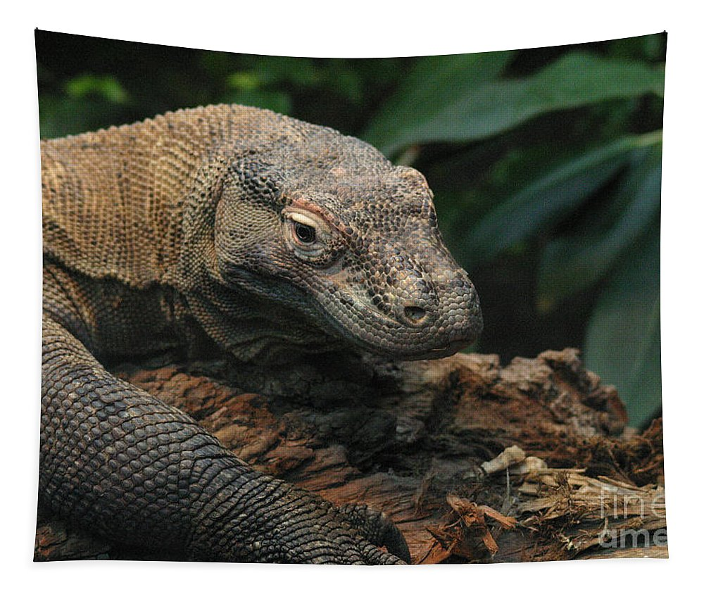 Komodo Dragon Tapestry featuring the photograph Komodo-7393 by Gary Gingrich Galleries